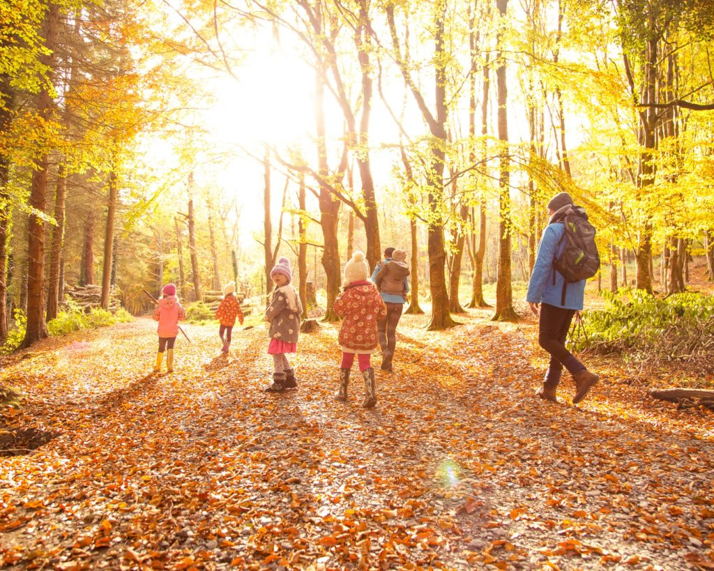 Why Should You Take a Walk Every Day?